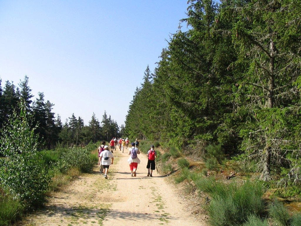 Sur le Chemin de Saint-Jacques de Compostelle
